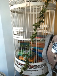My favorite item in the shop: A hand painted birdcage full of books!